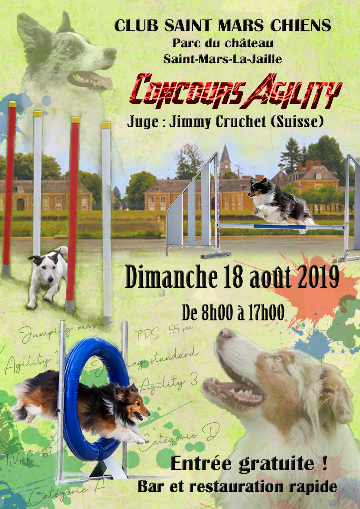Concours Agility 2019